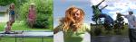 Bedste trampoliner – Find trampoliner til haven her